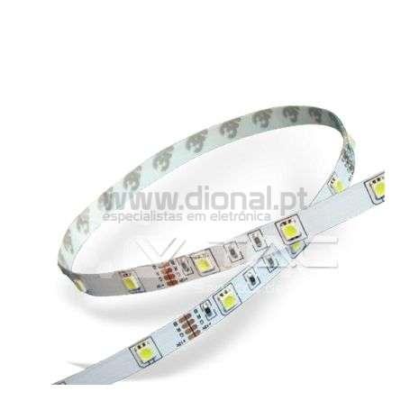 Fita LED 4,8W/m 6000K SMD5050 30LEDs/m 12V IP20